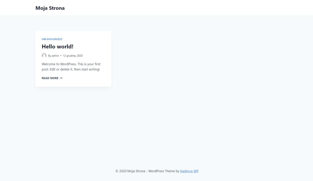 Wygląd strony internetowej przed importem