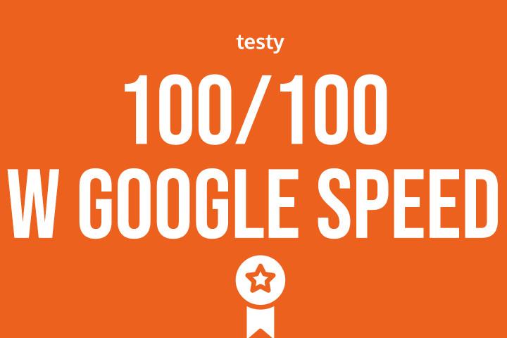 Wynik w Google Page Speed 100/100